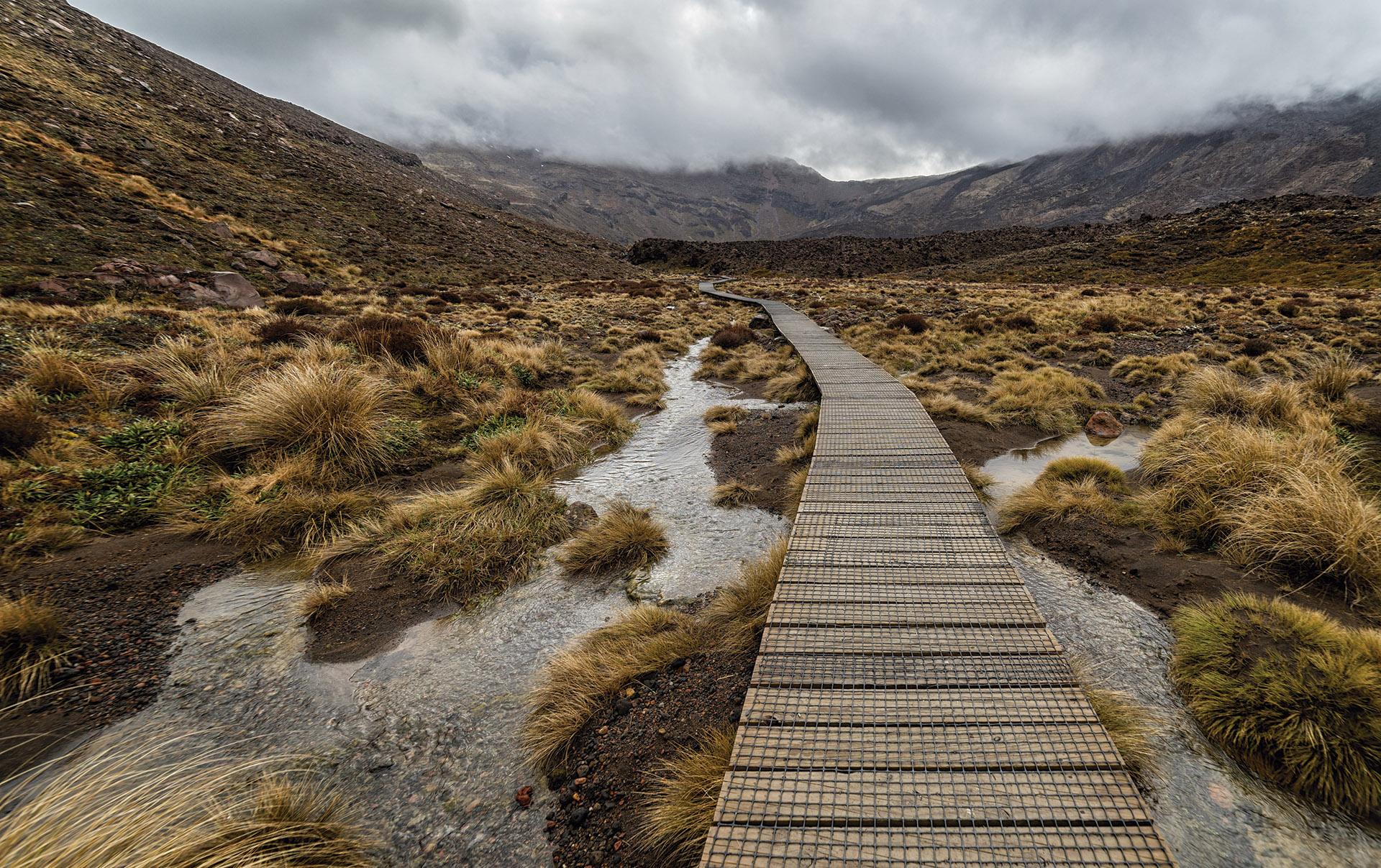 paseo de madera con malla de seguridad antidelizante trek-net