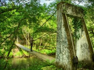 El trayecto pertenece a la Reserva de Biosfera Río Eo, Oscos y Tierras de Burón, así como a la Red Natura 2000