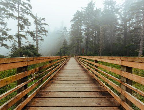 Rutas por pasarelas con encanto en Galicia