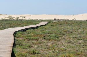 El Parque Natural de Corrubedo tiene cinco senderos a elegir