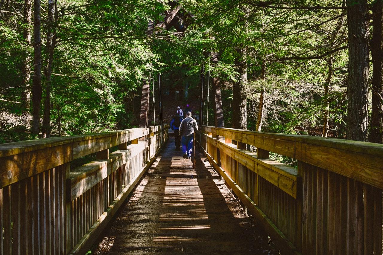 Entre los beneficios de los bastones de trekking destaca la optimización del esfuerzo o el fortalecimiento de los músculos